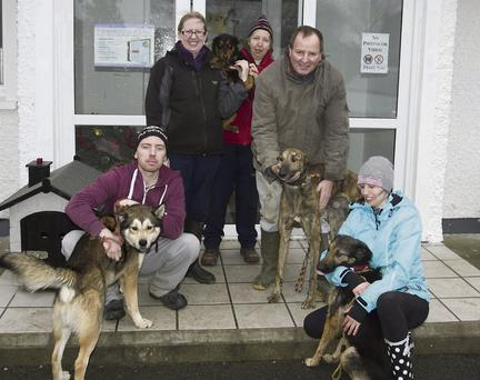 Ann Fitzpatrick, Linda Byrne, Patrick Byrne, Calvin Gammell and Marianne Dickenson of Wicklow SPCA with the dogs that can be adopted.
