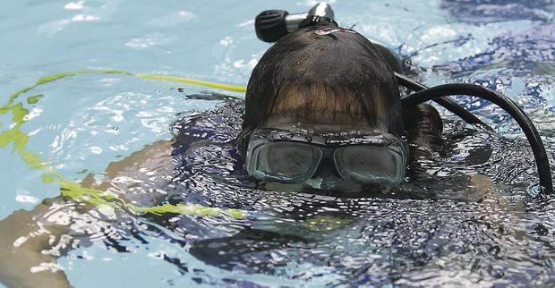 Erin Connolly tries Scuba diving at the Coral leisure centre fun day, Arklow