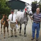 Terry Keogh and Pat Murphy at the Spruce Lodge horse show, Redcross, Co Wicklow