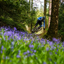 One of the riders at last year's Emerald Enduro (Photo: Matt Wragg)