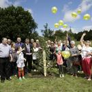 Balloons being released at the Tree of Hope planting in Rathnew on Saturday