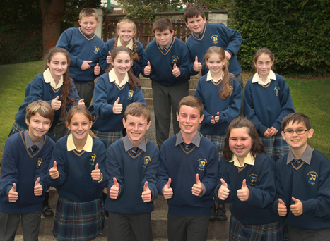 The seven sets of twins who started at Colaiste Bride, Carnew last week: (back) Jake and Rebecca Kenny, Sean and Brian Kenny, (middle) Aoife and Erin Callaghan, Tasha and Ashleigh Farrell, (front) Padraic and Aoife Stafford, Daniel and Brendan Bolger, Emma and Jack Rosney
