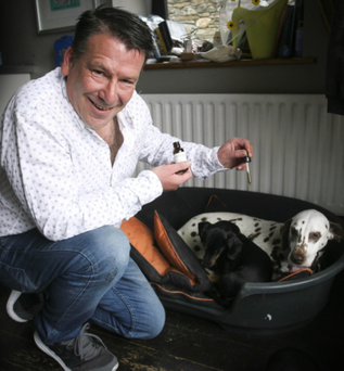 Neil More O'Ferrall administering some of the cannabis oil to his dogs