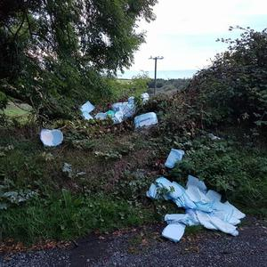 At least 25 packs of incontinence pads were dumped on the Greenhill Road, just past the scenic view car park.