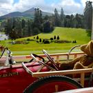 Susanna Braswell's quirky image of a vintage teddy bear gazing at the beautiful gardens of Powerscourt.