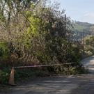 A tree down on the Blainroe Road in Wicklow yesterday (Tuesday)