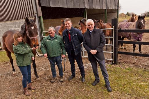 Sharon Power and Martin Bolger of the Irish Horse Welfare Trust with Mark McGoldrick and Fergal Black from the Irish Prison Service at a meeting to discuss the new equine prisoner rehabilitation unit at Castlerea Prison.