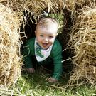 Blake Eccles coming through the hay bale tunnel at the open farm day at Kilmullen House. Photos: Barbara Flynn