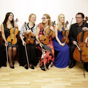 Musici Ireland, who will open and close the Music in Calary Series