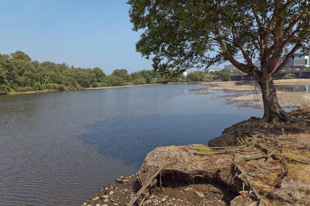 The Avoca River in Arklow is one of the rivers that will be monitored as part of the IBAL Anti-Litter League.