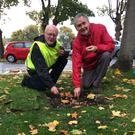 Tom Mulvihill (right) from Wicklow Rotary Club helps Andrew Lawless from Wicklow Tidy Towns to start plant some of the 5,000 bulbs donated by the Rotary Club at Bachelor's Walk, Wicklow town.