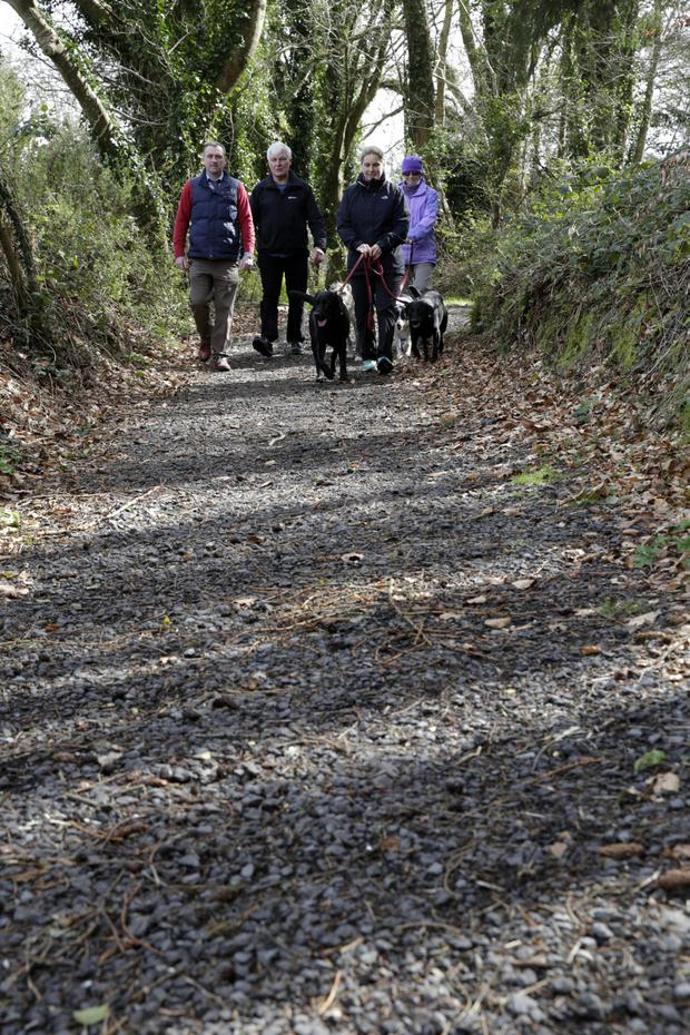 Taking a stroll on some of the new gravel paths that were installed as part of the Vartry Trails