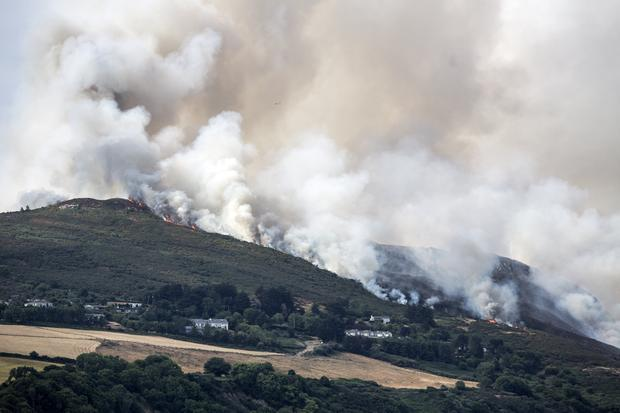 The fires on Bray Head in July last year that threatened homes and made national headlines