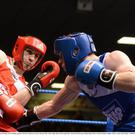 Ross Hickey, left, Grangecon Boxing Club, exchanges punches with Ray Moylette, St Annes Boxing Club, in their 64kg Light Welterweight final. National Elite Boxing Championship Finals, National Stadium, Dublin. Picture credit: David Maher/Sportsfile.