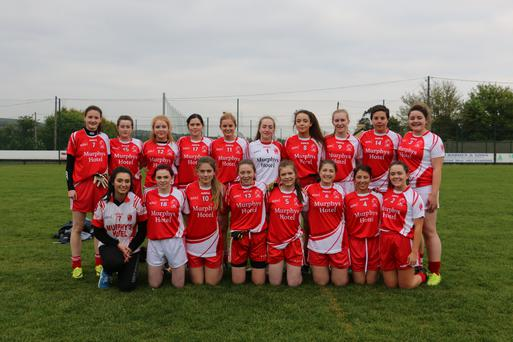 The Tinahely side who defeated Carnew in Carnew last Saturday evening.