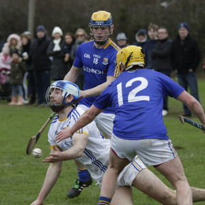 Eoin McCormack gets his pass away during the Kehoe Cup clash against Longford. Photo: Barbara Flynn
