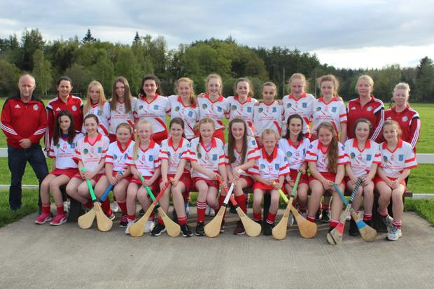 The Aughrim camogie team and mentors ahead of their momentous trip to Féile na nGael 2019