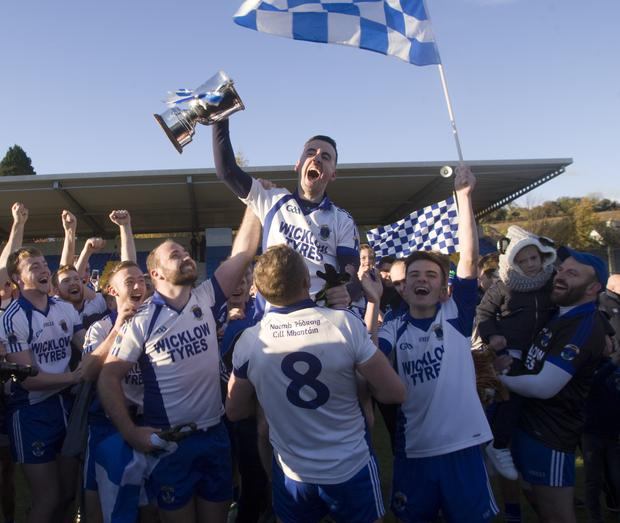Here we go again! The hunt for Miley begins in earnest this weekend. Pictured are Pat's players celebrating a great day in Aughrim in 2018