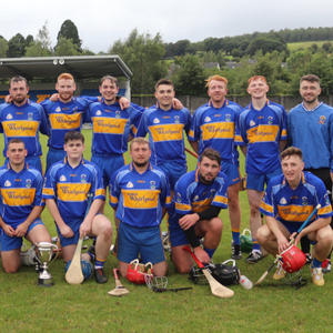 The Carnew Emmets Intermediate hurlers and supporters after they claimed the Lacey Furlong Cup