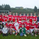 Glenealy, U-16 'A' Hurling Shield winners