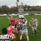 Greystones win a line-out against Cashel
