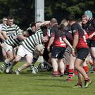 Michael Doyle of Greystones tries to make the hard yards against Rainey Old Boys in Dr Hickey Park on Saturday afternoon