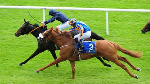 Curvy just holds on from Giovanni Canaletto