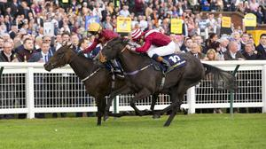 Dark Reckoning (left) wins the Firth Of Clyde from Parsley, with Ainippe out of shot back in third
