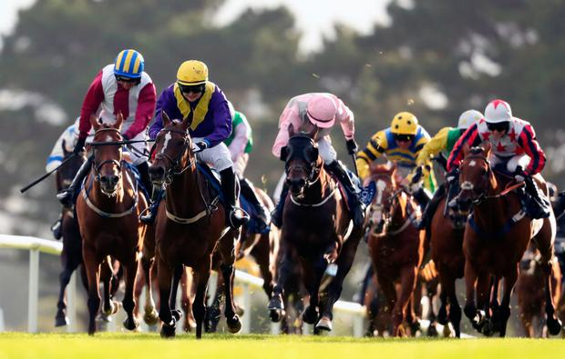 Whiskey Sour, with Aubrey McMahon up (second left), on the way to winning the Connacht Hotel Handicap. Photo: PA