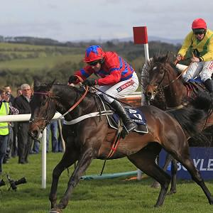 Sprinter Sacre races clear of Sizing Europe after the last