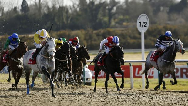 Captain Joy ridden by Pat Smullen (left, yellow and white cap) wins the Ladbrokes All-Weather Mile Championships Conditions Stakes at Lingfield in 2016