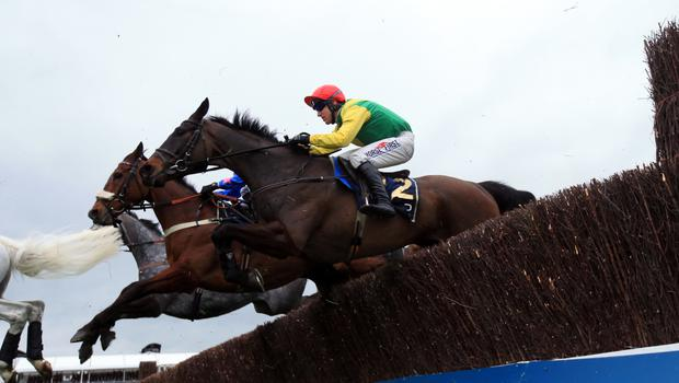 Sizing John won the Gold Cup