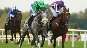 The Grey Gatsby winning last year's Irish Champion Stakes