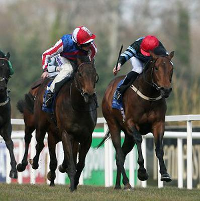 Fort Knox delivers a winning run in the 2,000 Guineas Trial
