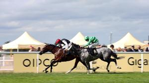 Free Eagle (left) holds off The Grey Gatsby to win the Prince Of Wales's Stakes at Royal Ascot