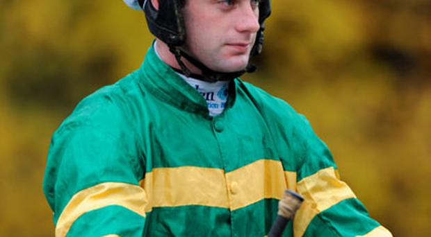 Niall Madden will be hoping to strike in the JP McManus colours aboard Ainama.