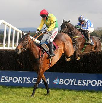 Sizing Europe triumphed in the Tied Cottage Chase by 10 lengths