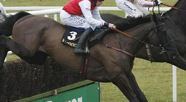 Joncol will bid for a second Hennessy Gold Cup this weekend