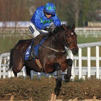 Hurricane Fly will be ridden by Ruby Walsh in the Champion Hurdle