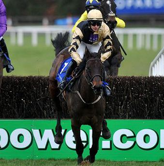 Willie Mullins has concerns over Boston Bob for Cheltenham