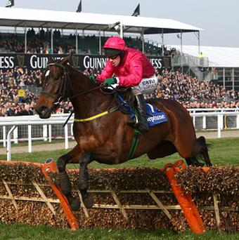 Monksland is unlikely to take his place in the World Hurdle