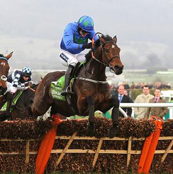 Hurricane Fly is one of 10 horses in the Champion Hurdle field