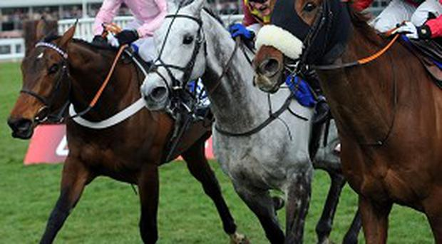 Benefficient (near) gets the better of Captain Conan and the grey Dynaste