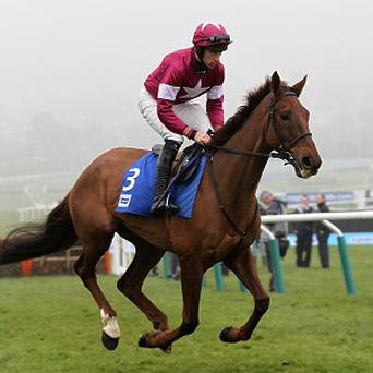 First Lieutenant will be partnered by Bryan Cooper at Aintree