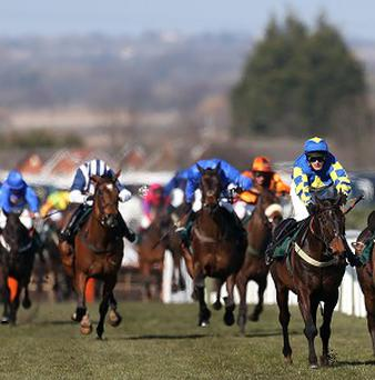 Auroras Encore leads the field home in the Grand National