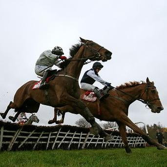Morning Assembly, left, held off Inish Island in the Irish Daily Mirror Novice Hurdle
