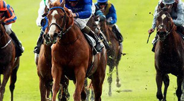 Dawn Approach eased to victory at Newmarket