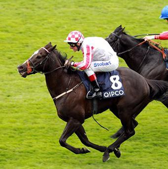 Sole Power keeps Kingsgate Native at bay