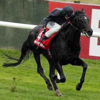 Nevis goes on to win the Betfred Derby Trial Stakes