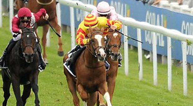 Galileo Rock finishes third in the Derby